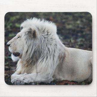 African White Lion Profile photo Mouse Pad