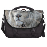 African white lion resting laptop computer bag
