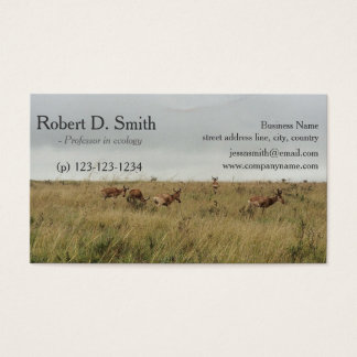 African wild animal deer science business cards