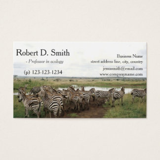 African wild animal zebra science professional business card