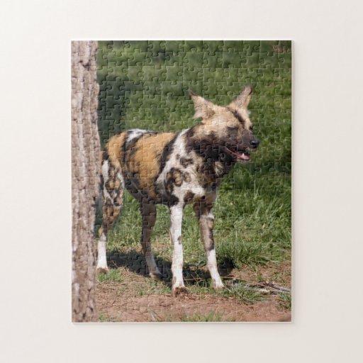 african-wild-dog-001 puzzle