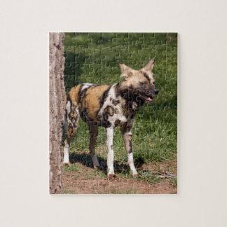 african-wild-dog-001 puzzle con fotos