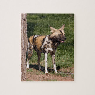 african-wild-dog-001 puzzles