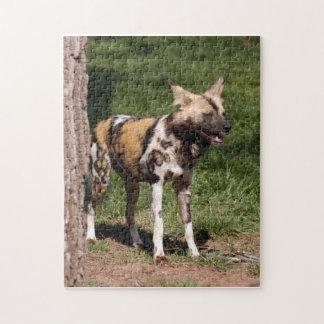 african-wild-dog-001 rompecabezas con fotos