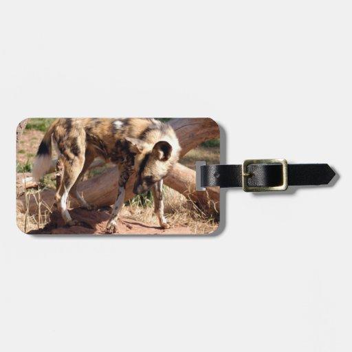 african-wild-dog-002 etiqueta de equipaje