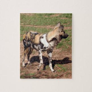 african-wild-dog-003 rompecabezas con fotos