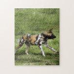 african-wild-dog-004 puzzle
