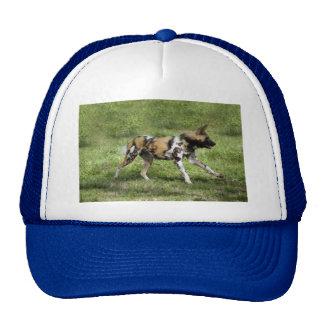 african-wild-dog-004 trucker hat