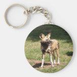 african-wild-dog-005 key chain