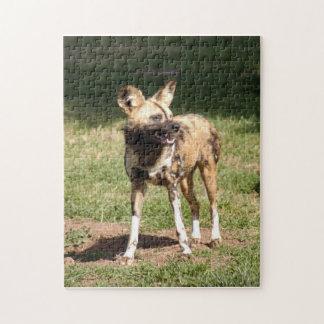 african-wild-dog-005 puzzle