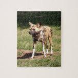 african-wild-dog-006 puzzle