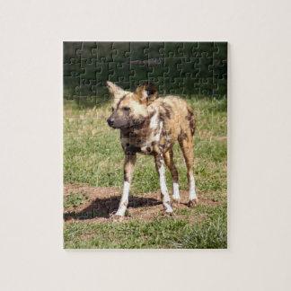 african-wild-dog-006 rompecabeza con fotos