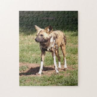 african-wild-dog-006 rompecabezas con fotos