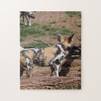 african-wild-dog-007 puzzles