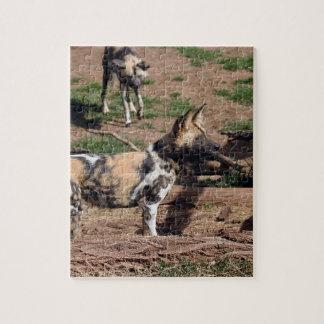 african-wild-dog-008 rompecabezas con fotos