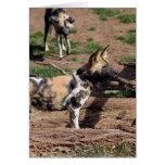 african-wild-dog-008 tarjeta de felicitación