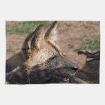 african-wild-dog-009 hand towel
