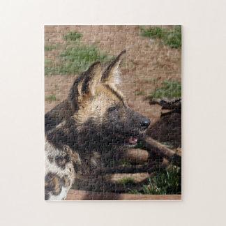 african-wild-dog-009 puzzle con fotos