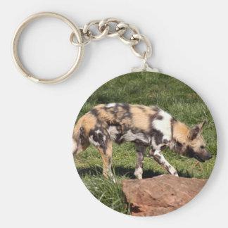 african-wild-dog-010 keychain