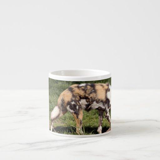 african-wild-dog-010 taza de espresso