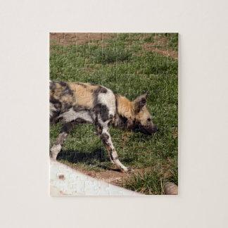 african-wild-dog-011 rompecabeza con fotos