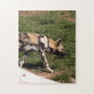 african-wild-dog-011 rompecabezas