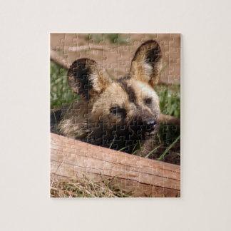 african-wild-dog-012 puzzle con fotos