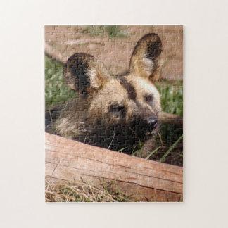 african-wild-dog-012 rompecabeza con fotos