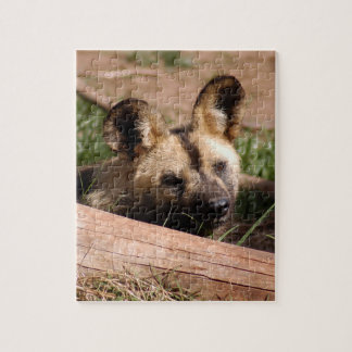 african-wild-dog-013 rompecabeza
