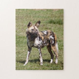 african-wild-dog-014 rompecabezas con fotos