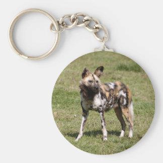 african-wild-dog-015 keychain