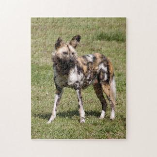 african-wild-dog-015 rompecabezas