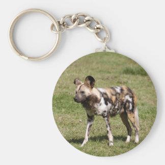 african-wild-dog-016 keychain