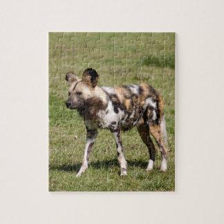 african-wild-dog-016 rompecabeza con fotos