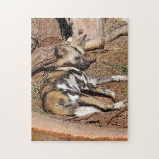 african-wild-dog-017 rompecabeza con fotos
