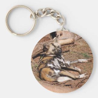 african-wild-dog-018 keychain