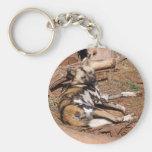african-wild-dog-018 keychains