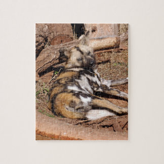 african-wild-dog-018 puzzles