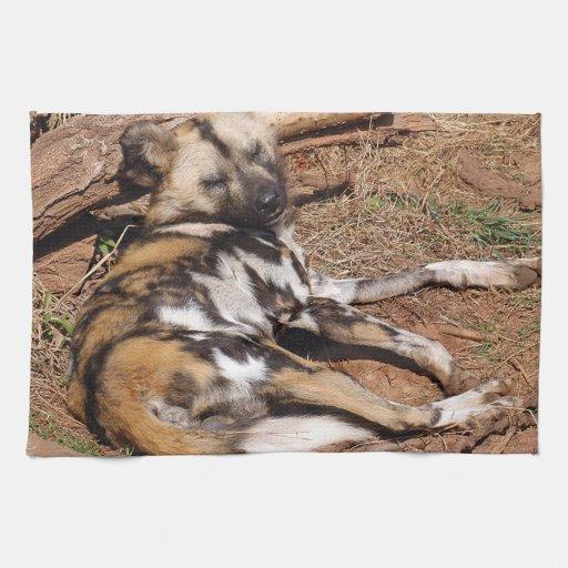 african-wild-dog-018 towel