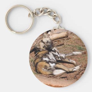 african-wild-dog-019 keychain
