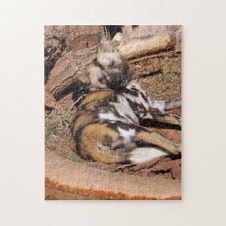 african-wild-dog-019 rompecabezas