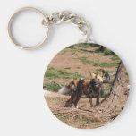african-wild-dog-020 key chains