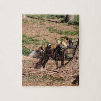 african-wild-dog-020 rompecabeza con fotos