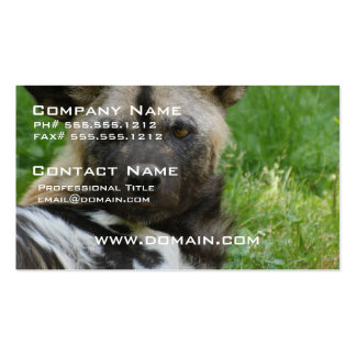 African Wild Dog Business Card