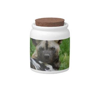 African Wild Dog Candy Jar
