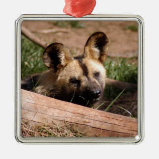 African Wild Dog Christmas Ornament