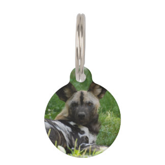 African Wild Dog Pet Tags