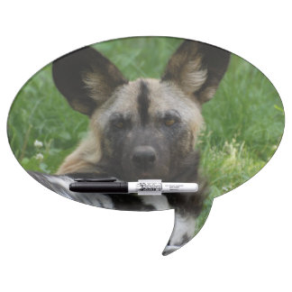 African Wild Dog Dry Erase Whiteboards