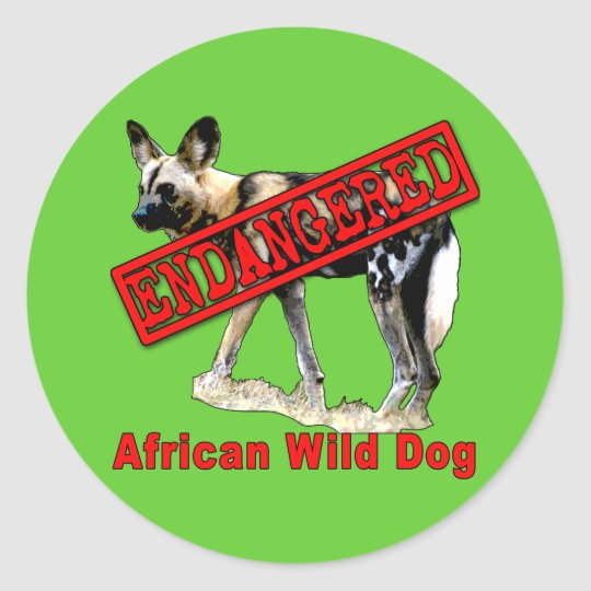 African Wild Dog Endangered Animal Products Classic Round Sticker