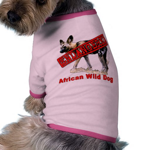 African Wild Dog Endangered Animal Products Dog Clothes